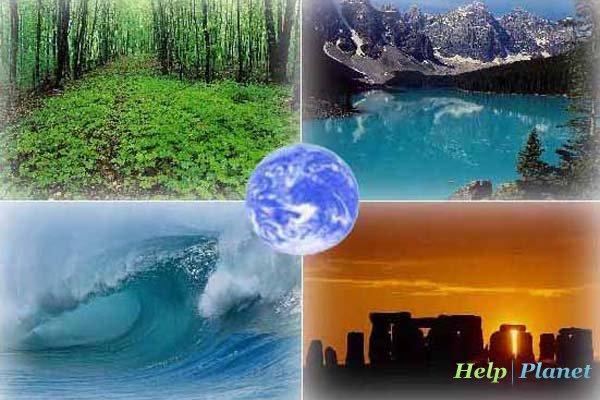 Нам остается надеяться на то, что люди одумаются и будут бережнее относиться к природе