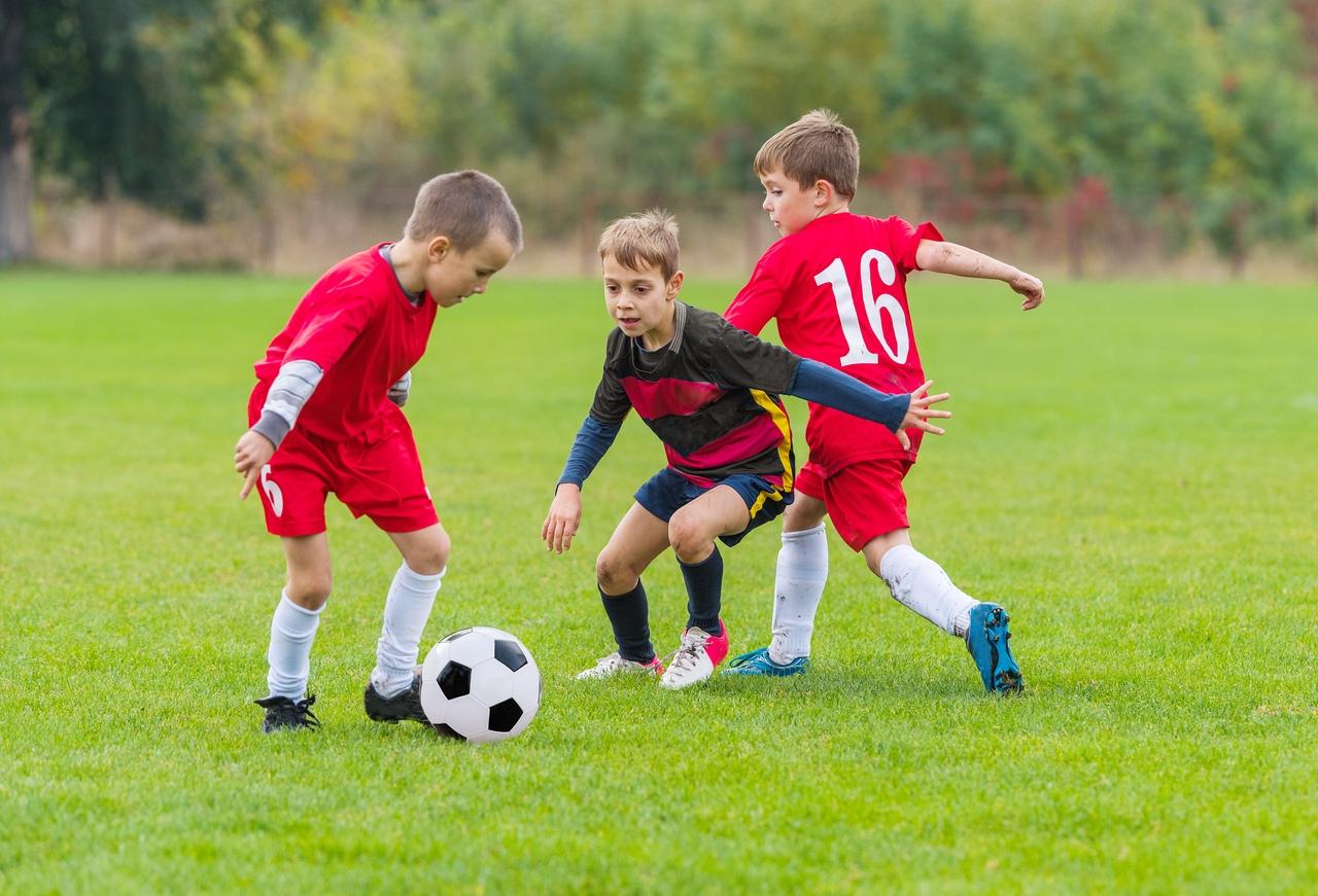 принципе картинки про школу футбола заболонную