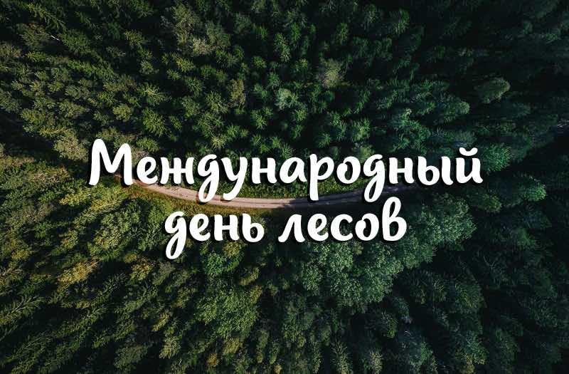 Международный день леса открытки